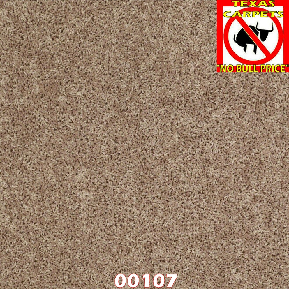 Ride It Out Shaw Texas Carpets