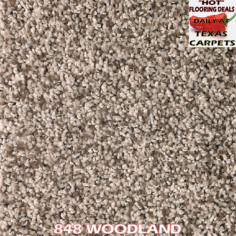 Fresh Start I Amp Ii Allspice Carpeting Mohawk Flooring