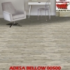 Adesa | Patcraft - Clerance Special